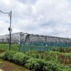 ソーラーシェアリング:八千代市のソーラーシェアリングサイトを見学してきました