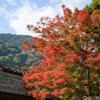 かやぶき屋根と紅葉