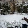 春かと思えば、大(?)雪
