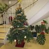 今年もクリスマスツリー出しました