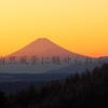 高ボッチ高原からの望む富士山、日の出写真と霧氷