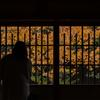 奈良町でレトロな街並みや古民家カフェ、オシャレなお店などをブラブラおさんぽ