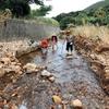 五島列島 荒川で手長海老を採りに行きました🦐