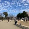 堺 「大泉緑地」がとっても素敵で大きな公園です!みんなで訪れよう!その理由とは?!