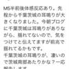 △17°トリガーと千葉県南部M5・1最大震度5弱