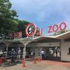 王子動物園は動物園らしくない動物園