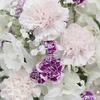 東海フラワーショウの花のイベント