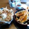 【今日の食卓】【江ノ島】江島神社・奥津宮近くの江之島亭で、海老天丼、しらすかき揚げ丼~メチャ旨