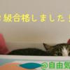 FP3級に合格!!1.5ヶ月の勉強方法を記載!!