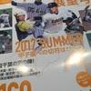 高校野球千葉大会の季節がやってきました〜!高橋が今年の千葉大会を占います!PART1 本命編!