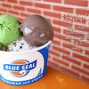 向山雄治の暑い季節にぴったい!絶対食べたいご当地アイスをご紹介!☆彡