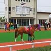【石川】地方競馬とノープラン散策