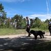 スペイン巡礼:【Day 2】Roncesvalles → Zubiri (21.7km)