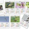 カレンダー制作
