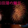 【秋田・青森】十和田湖の雄大な自然〜キャンプと釣りと花火大会