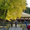 「新宮熊野神社」会津から佐渡へ その5