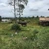 アンコールワット個人ツアー(180)遺跡の他、体験観光として、カンボジアの日常生活