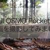 実写レビュー!動画をyoutubeにアップ!DJI Osmo Pocket(オズモポケット)はやっぱり旅カメラに使えます!