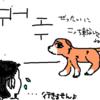 【ランニング】犬にはリードを付けて欲しいと切に。
