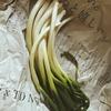⋆☽頂き物のお葱でかんたん和風パスタ☽⋆