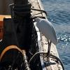 漁船のコサギ 2014 11月