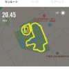 柏の葉爽快マラソン