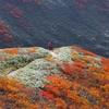 紅葉の月山にて