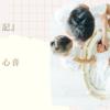 妊娠7ヶ月の心音の位置(24週)