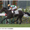 【父:キンシャサノキセキ】2021年度キャロットクラブ募集確定馬の種牡馬別評価(12)【一口馬主】