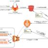 AWS Fargateのデプロイパイプライン(Gitlab > S3 > CodePipeline)を構築してみた