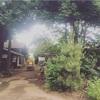 24.清水農園秋祭り