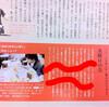 「散歩の達人」2011年2月号No.179 に「水曜日の会」 - ゲームに国境も電気も必要なし