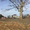 多摩湖月例マラソン参加 12月4日(日)
