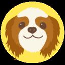 Dog&Cat チャーリー 犬の森日記