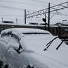 久しぶりの雪景色・・