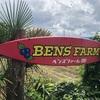 東京都小平市のブルーベリー摘み取り農園「ベンズファーム」に行ってみた感想