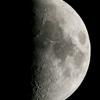 上弦の月(月齢8.044)