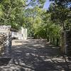 王子動物園の前身は、諏訪山動物園。
