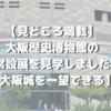 【見どころ満載】大阪歴史博物館の常設展を見学しました【大阪城を一望できる】