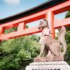 写ルンです@京都