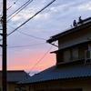 【大山訪問記】その地域の「暮らし」に触れる観光