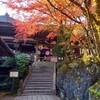 活動開始!京都近郊に足をのばして石山寺(滋賀県)で紅葉狩り🍁無添加石山プリン