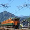 信越本線でオレンジ色の115系を愛でる