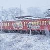 暖冬 V.S. 冬景色 近江鉄道篇 <2> 雪を撮る!