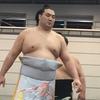 昨日大相撲静岡場所行って来ました。