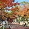京都の紅葉の穴場2020、人が少ない場所を紹介。