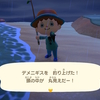 あつまれどうぶつの森 レア深海魚デメニギスを釣り上げる!釣れない人は釣りをする時間に注意 釣れる時間帯・場所・生息時期はこちら【画像・いきもの図鑑アプリ】