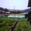 草刈り~!^^