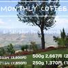 今月のコーヒー20%OFF エルサルバドル ペニャ・レドンダ農園