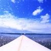 サーフィンと台風と甲子園